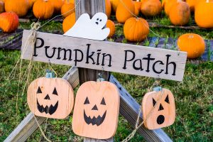 Perche La Zucca A Halloween.Perche Ad Halloween Si Intagliano Le Zucche Officina Magazine